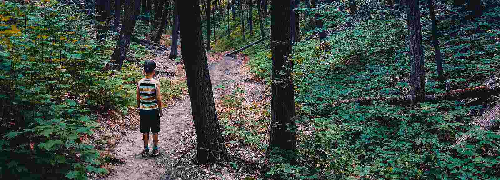 petit garçon sur un sentier dans la forêt